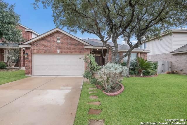 8622 Cantua Creek, Helotes, TX 78023 (MLS #1424421) :: Carolina Garcia Real Estate Group
