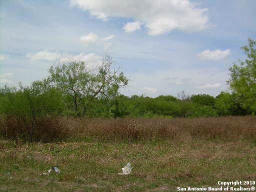419 Hopkins St, San Antonio, TX 78221 (MLS #1424435) :: Erin Caraway Group