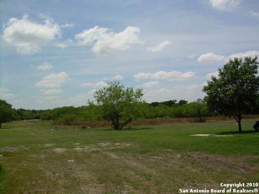 427 Hopkins St, San Antonio, TX 78221 (MLS #1424440) :: Erin Caraway Group