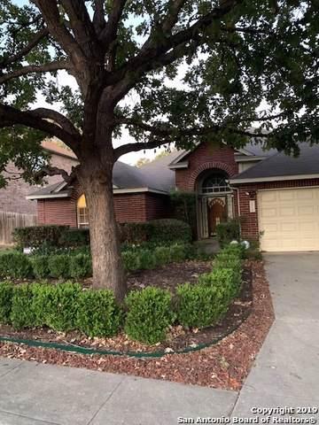 15222 Spring Smoke, San Antonio, TX 78247 (MLS #1424458) :: BHGRE HomeCity