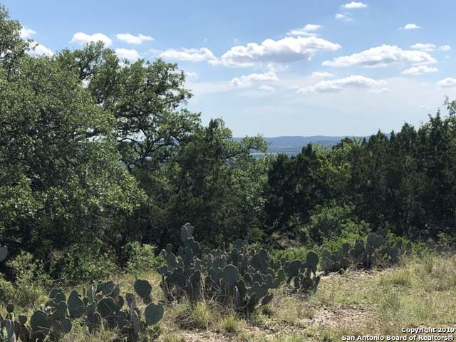 LOT 59 Lakepark Dr, Lakehills, TX 78063 (MLS #1424556) :: Alexis Weigand Real Estate Group