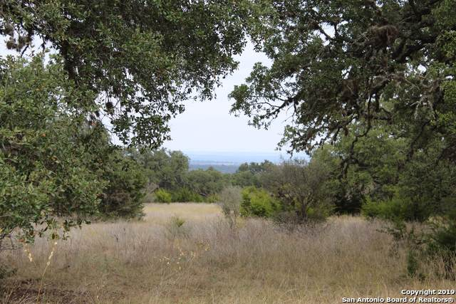 5 Phillip Ranch Rd., Boerne, TX 78006 (MLS #1424576) :: Carolina Garcia Real Estate Group