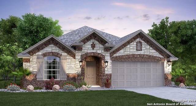 233 Holland Park, Cibolo, TX 78108 (MLS #1424645) :: BHGRE HomeCity