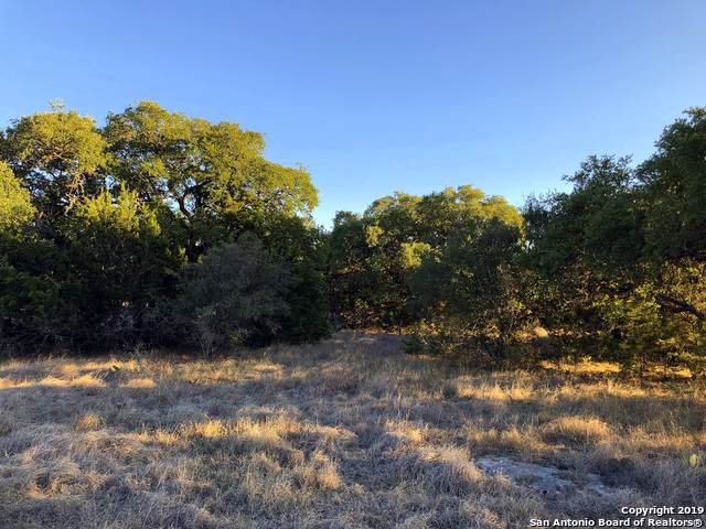 LOT 1165 N. John Bird, Blanco, TX 78606 (MLS #1424688) :: Alexis Weigand Real Estate Group