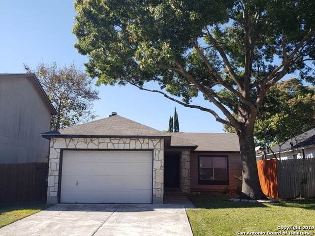 7715 Chatsworth, San Antonio, TX 78250 (MLS #1424700) :: BHGRE HomeCity