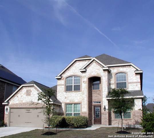 14110 Saratoga Pass, San Antonio, TX 78254 (MLS #1424717) :: Alexis Weigand Real Estate Group