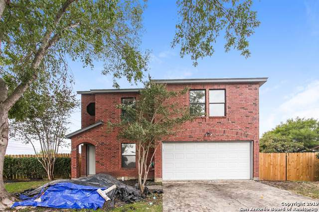 8003 Chestnut Bluff Dr, Converse, TX 78109 (MLS #1424853) :: Alexis Weigand Real Estate Group