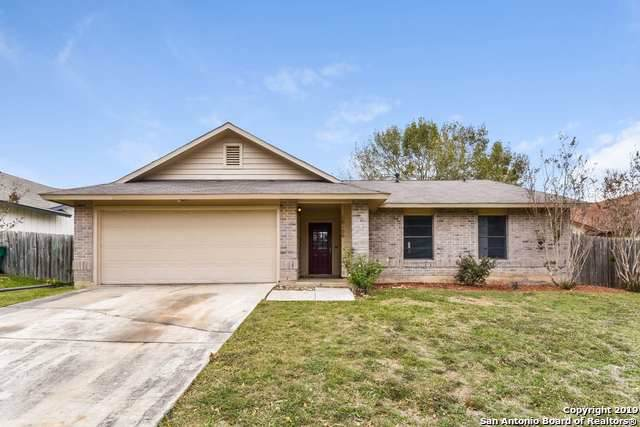 10106 Outlaw Bnd, Converse, TX 78109 (MLS #1424857) :: Alexis Weigand Real Estate Group