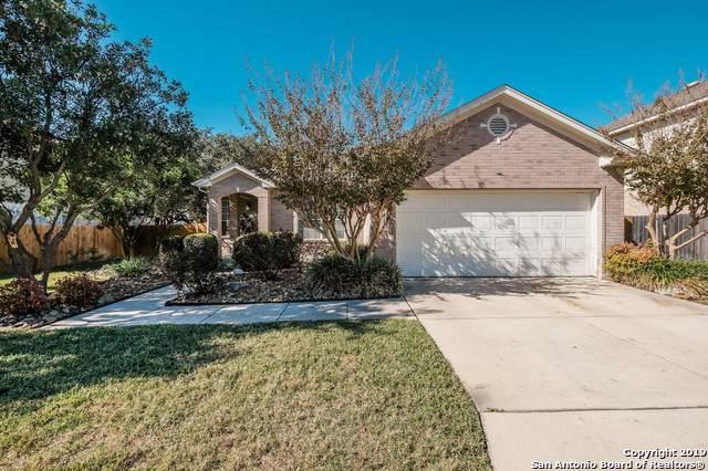 4711 Shavano Bark, San Antonio, TX 78230 (MLS #1424893) :: The Castillo Group