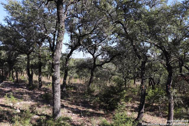 LOT 38 Pasadera, Boerne, TX 78006 (MLS #1424901) :: Carolina Garcia Real Estate Group