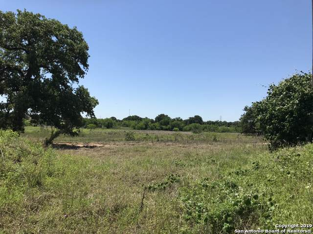 19764 S State Hwy 123, Seguin, TX 78155 (MLS #1425122) :: Alexis Weigand Real Estate Group