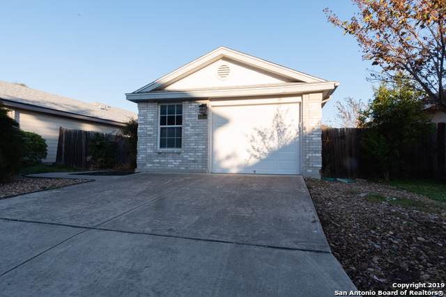 4008 Nettle Brk, San Antonio, TX 78244 (MLS #1425165) :: Alexis Weigand Real Estate Group
