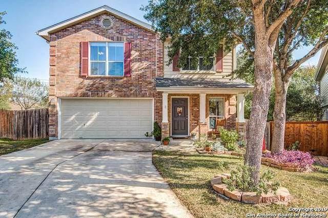 15702 Ashley Manor, San Antonio, TX 78247 (MLS #1425205) :: Niemeyer & Associates, REALTORS®