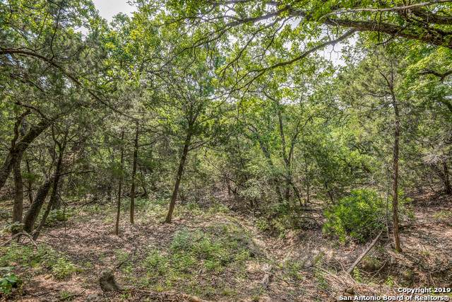 119 Chinkapin Pass, Boerne, TX 78006 (MLS #1425284) :: Glover Homes & Land Group