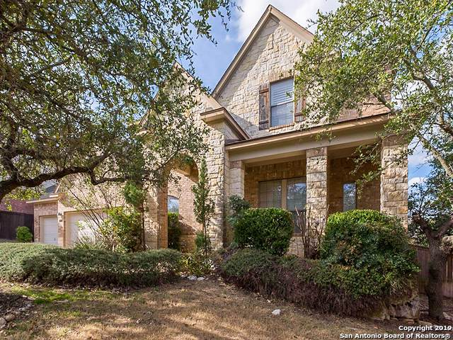 823 Celestial View, San Antonio, TX 78260 (#1425341) :: The Perry Henderson Group at Berkshire Hathaway Texas Realty