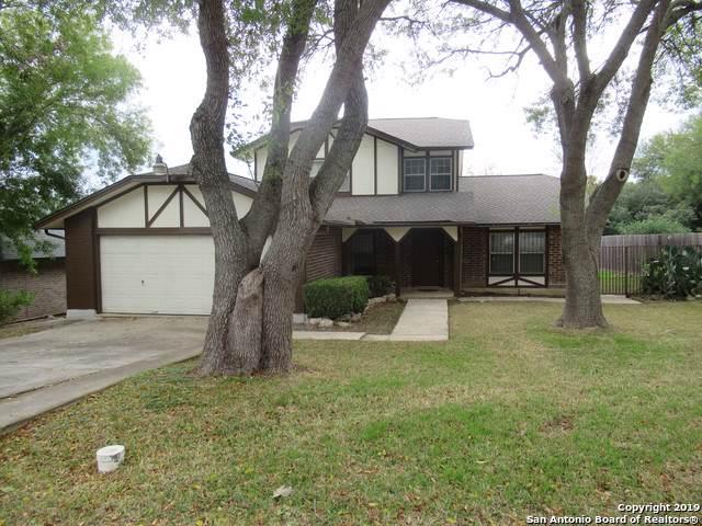 6714 Vineland, San Antonio, TX 78239 (#1425344) :: The Perry Henderson Group at Berkshire Hathaway Texas Realty
