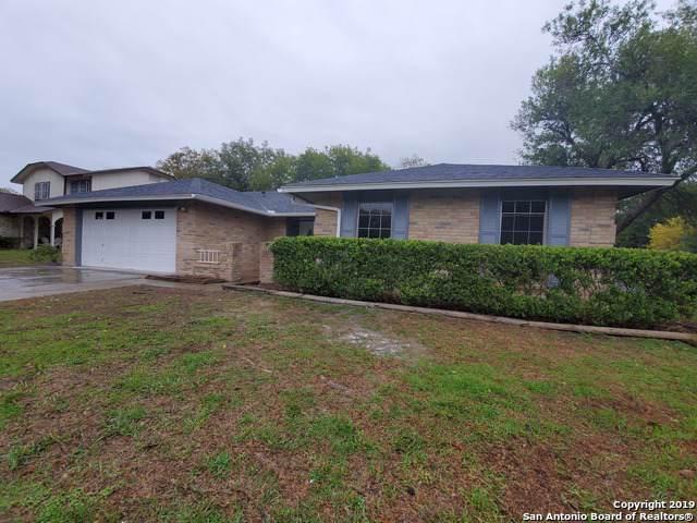 8002 New World, San Antonio, TX 78239 (MLS #1425603) :: Glover Homes & Land Group