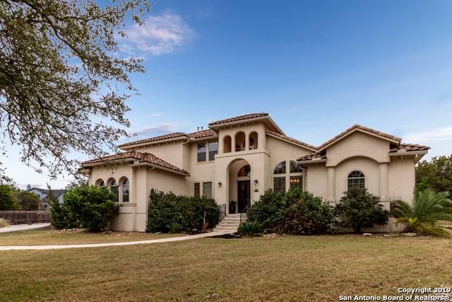 26202 Dark Horse Ln, San Antonio, TX 78260 (MLS #1425764) :: BHGRE HomeCity