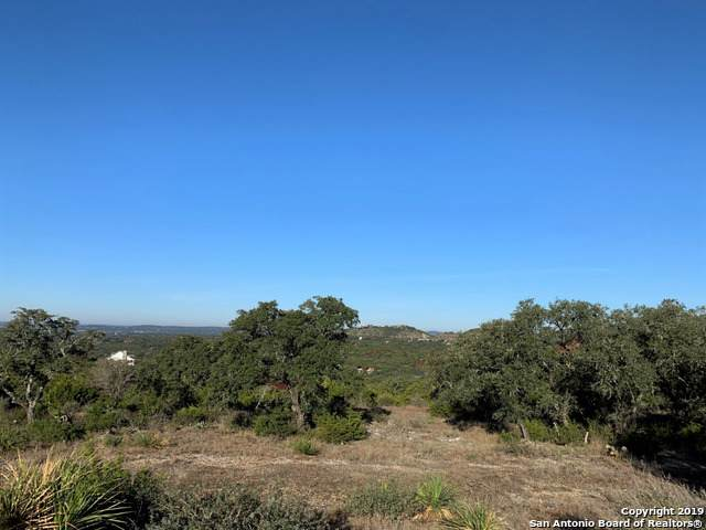 30263 Cloud View Dr, Bulverde, TX 78163 (MLS #1425825) :: Reyes Signature Properties