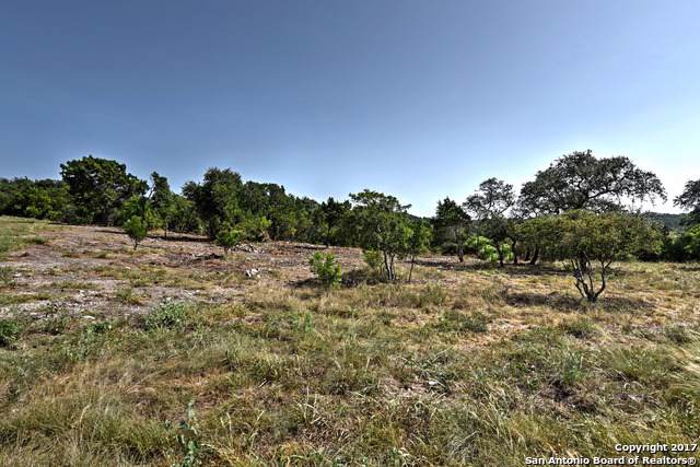 LOT 169 County Road 2814, Mico, TX 78056 (MLS #1425897) :: Alexis Weigand Real Estate Group
