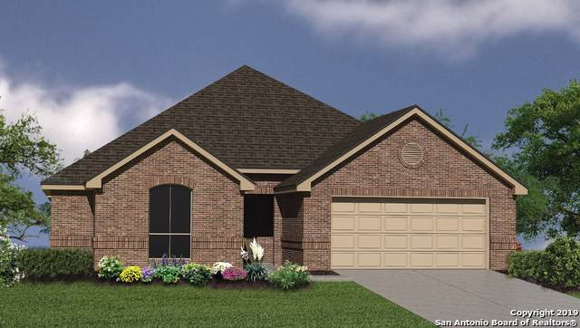 8220 Scarlet Gaura, Boerne, TX 78015 (MLS #1426124) :: BHGRE HomeCity