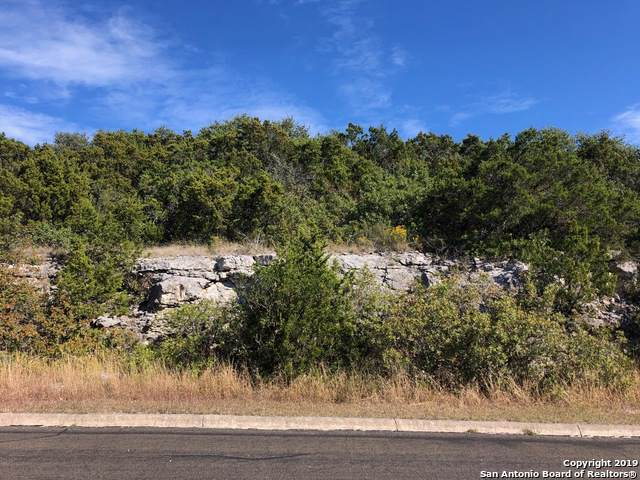 11253 Condor Pass, Helotes, TX 78023 (MLS #1426260) :: The Gradiz Group