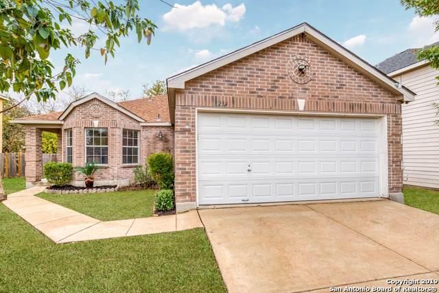 8234 Campanario, San Antonio, TX 78250 (MLS #1426294) :: Alexis Weigand Real Estate Group