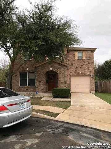 172 Booker Palm, San Antonio, TX 78239 (MLS #1426482) :: BHGRE HomeCity