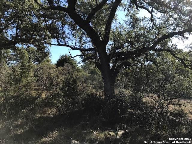 401(LOT 1593) Arthur Ct, Spring Branch, TX 78070 (MLS #1426590) :: BHGRE HomeCity