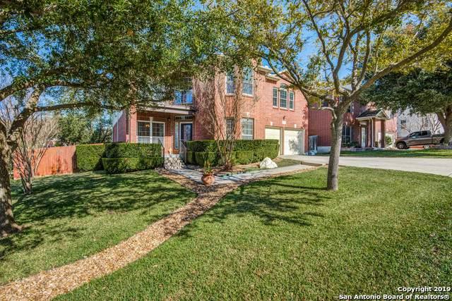 21210 El Suelo Bueno, San Antonio, TX 78258 (MLS #1426768) :: Alexis Weigand Real Estate Group