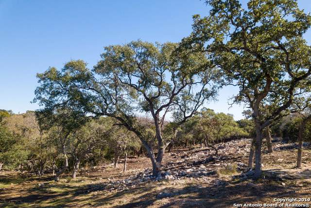 2361 Appellation, New Braunfels, TX 78132 (MLS #1426870) :: Alexis Weigand Real Estate Group