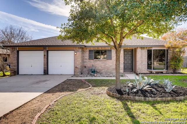 2750 Knoll Tree St, San Antonio, TX 78247 (MLS #1426983) :: The Gradiz Group