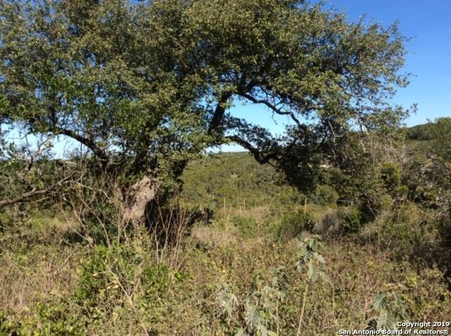 LOT 160 County Road 2728, Mico, TX 78056 (MLS #1427032) :: Alexis Weigand Real Estate Group