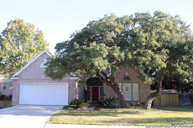 3011 Fall Crest Dr, San Antonio, TX 78247 (MLS #1427092) :: Alexis Weigand Real Estate Group