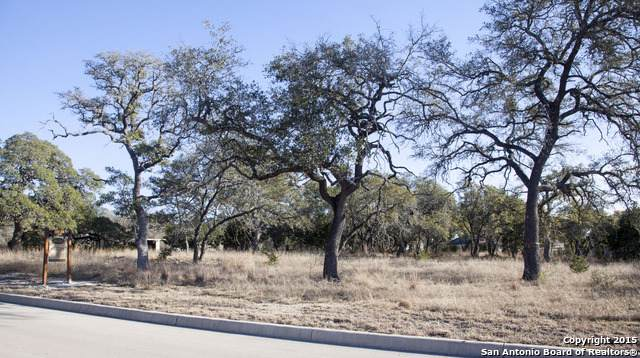 320 Ranch Pass, Fair Oaks Ranch, TX 78015 (MLS #1427141) :: Neal & Neal Team