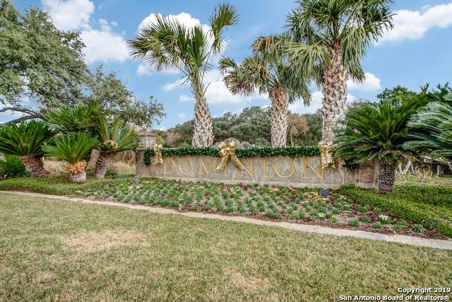 5 Vineyard Dr, San Antonio, TX 78257 (MLS #1427193) :: Alexis Weigand Real Estate Group