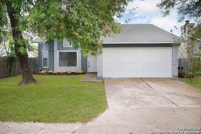8446 Maple Ridge Dr, San Antonio, TX 78239 (MLS #1427374) :: Alexis Weigand Real Estate Group