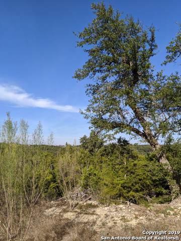 1370 Merlot, New Braunfels, TX 78132 (MLS #1427427) :: Alexis Weigand Real Estate Group