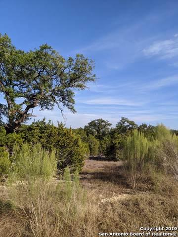 1374 Merlot, New Braunfels, TX 78132 (MLS #1427430) :: Alexis Weigand Real Estate Group