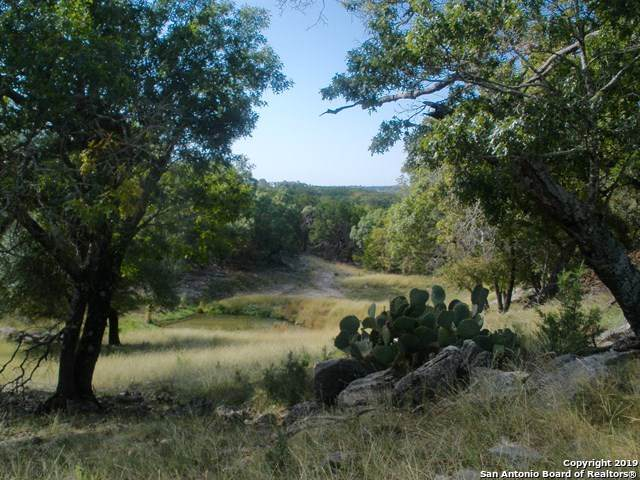 170 Lariat Ln, Kerrville, TX 78028 (MLS #1427459) :: Alexis Weigand Real Estate Group