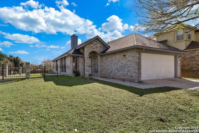 5886 Spring Xing, San Antonio, TX 78247 (MLS #1427516) :: BHGRE HomeCity