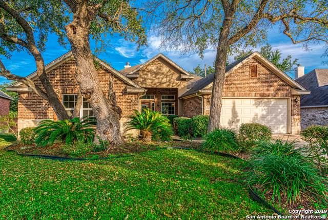 25210 Shinnecock Trl, San Antonio, TX 78260 (MLS #1427537) :: Alexis Weigand Real Estate Group