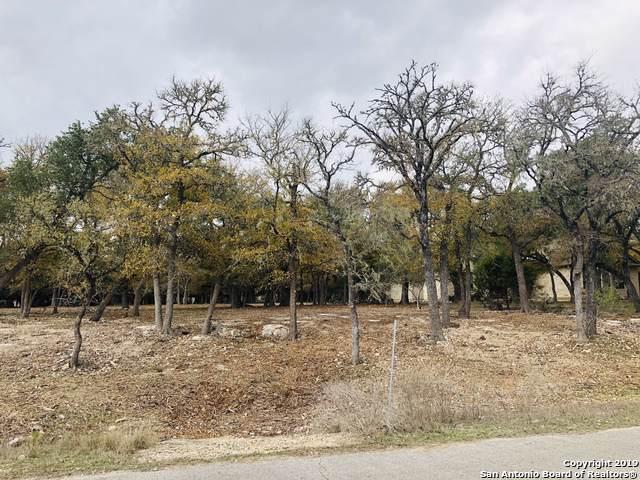 1074 Pegasus Dr, Spring Branch, TX 78070 (MLS #1427657) :: The Heyl Group at Keller Williams