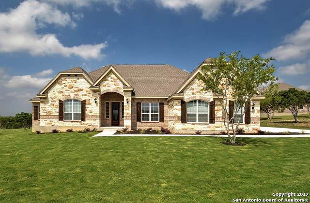 300 Big Bend Path, Castroville, TX 78009 (MLS #1427689) :: The Heyl Group at Keller Williams