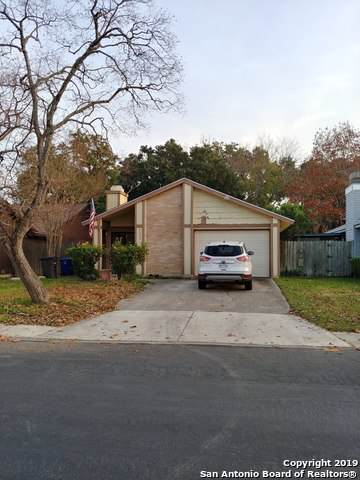 5912 Misty Gln, San Antonio, TX 78247 (MLS #1427915) :: Alexis Weigand Real Estate Group