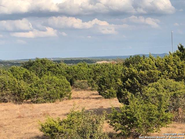 166 Gauntlet Circle, Spring Branch, TX 78070 (MLS #1428041) :: Alexis Weigand Real Estate Group