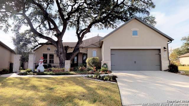 22915 Canasta, San Antonio, TX 78261 (MLS #1428131) :: Reyes Signature Properties