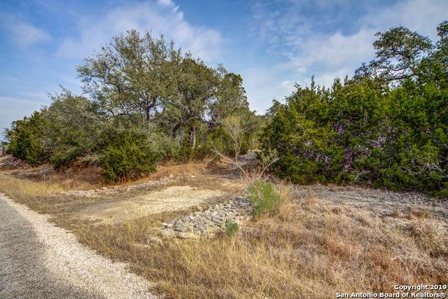815 Hidden Oaks Dr, Bulverde, TX 78163 (MLS #1428198) :: Jam Group Realty