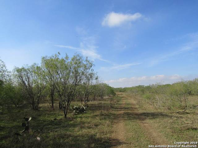 2720 Elm Creek Rd, Seguin, TX 78155 (MLS #1428208) :: Alexis Weigand Real Estate Group