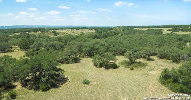 3143 N Us Highway 281, Blanco, TX 78606 (MLS #1428211) :: Alexis Weigand Real Estate Group